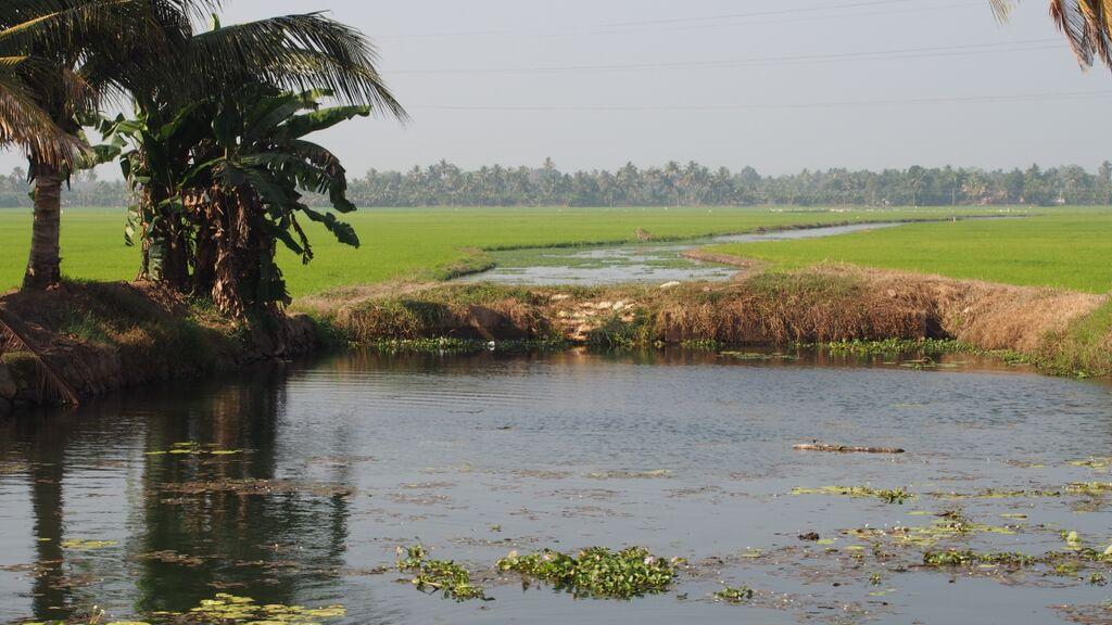 Tamil Nádu-10